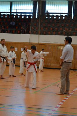 Okinawa Karate-Seminar in Kelheim