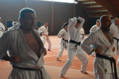 Keywords: Shorin Ryu Seibukan Karate;Jinbukan Kobudo
