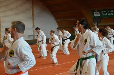 Keywords: Shorin Ryu Seibukan Karate; Jinbukan Kobudo